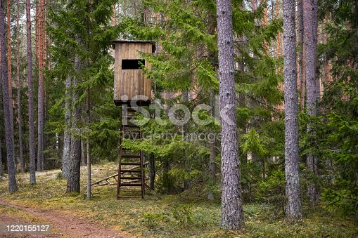 istock Hunters hut in the forest. Hunter tower or watch post in the wilderness. Elevated wooden structure 1220155127