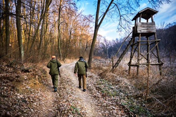 chasseurs dans la forêt - chasser photos et images de collection