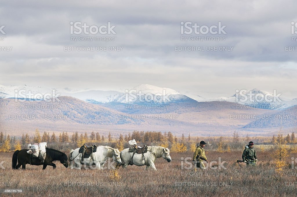 Hunters in the hunt. stock photo