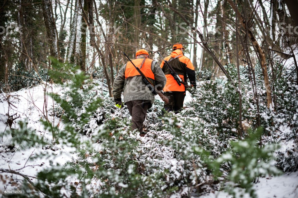 Hunters in the woods stock photo