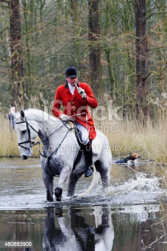 amsterdam, netherlands - March 15, 2014: hunters riding their horses through a swamp in historic clothing during a fox hunt in the amsterdam forest