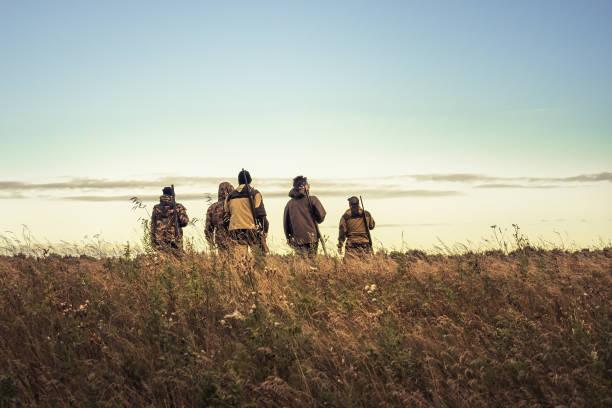 jägare silhuetter mot himlen går genom landsbygden fält mot horisonten under jaktsäsongen - rovdjur bildbanksfoton och bilder