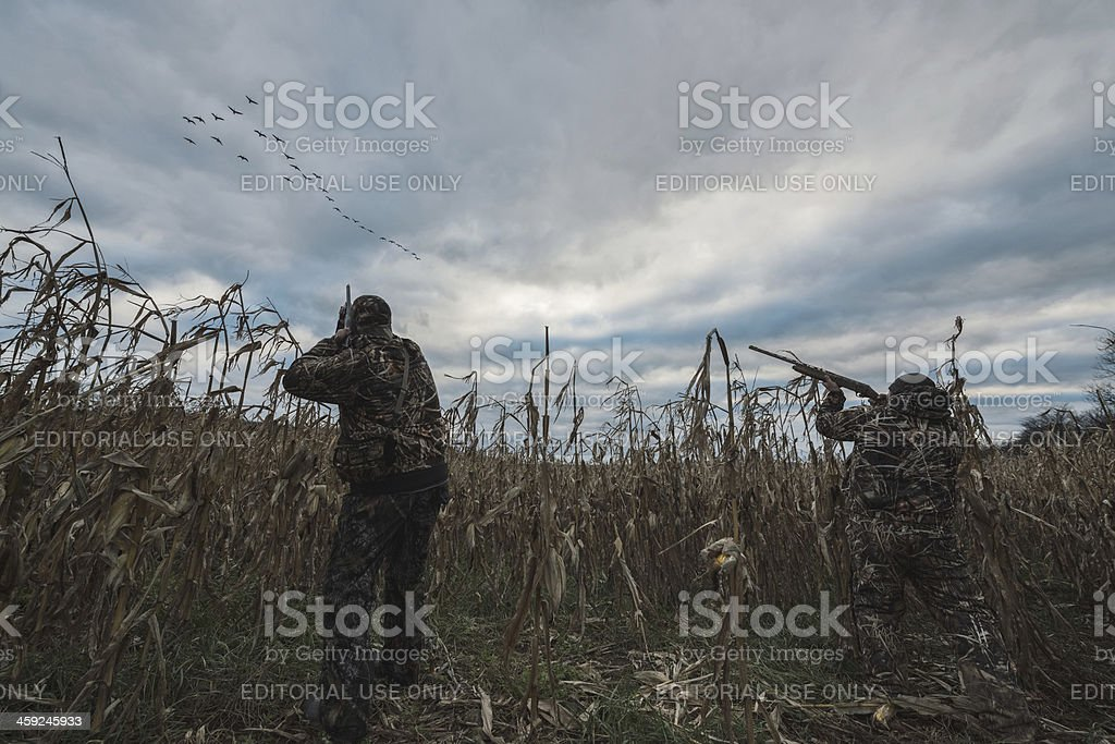 Hunters Take Aim stock photo