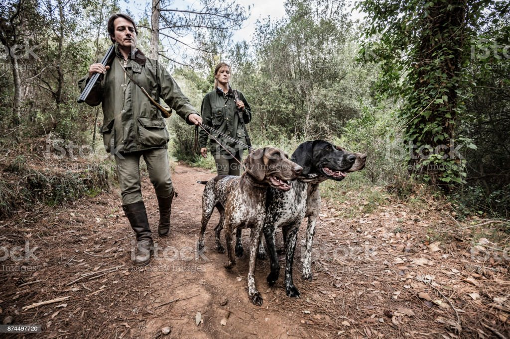 Hunters with German Shorthaired Pointers in Catalonia Spain stock photo