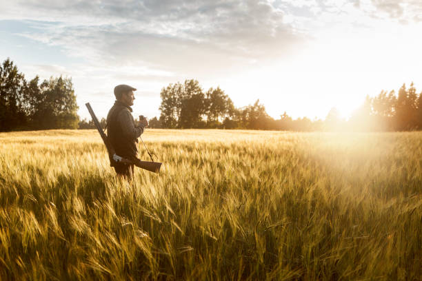 Hunting at golden hour Gentleman style hunting. Shot in Norther Europe. hunter stock pictures, royalty-free photos & images