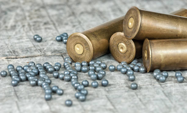 Hunting cartridges and lead shot stock photo