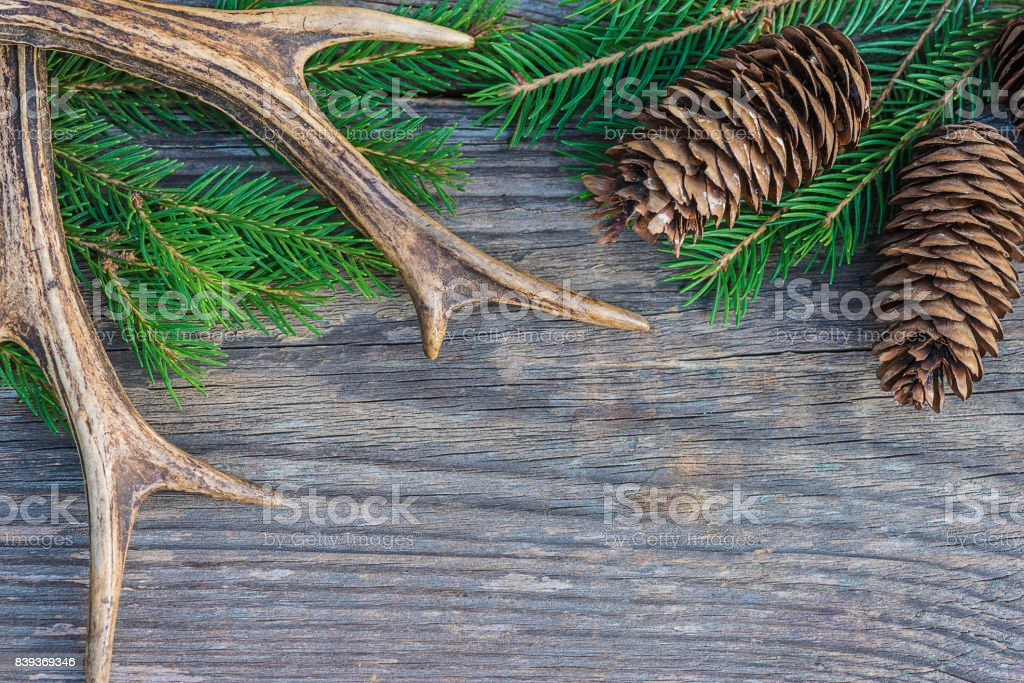 hunting decoration stock photo
