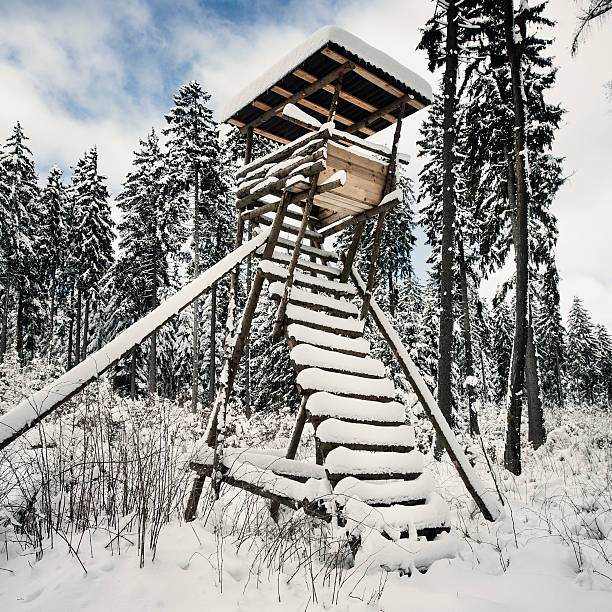 Hunting deer stand in the snow Hunting deer stand in the snow - toned image high seat stock pictures, royalty-free photos & images