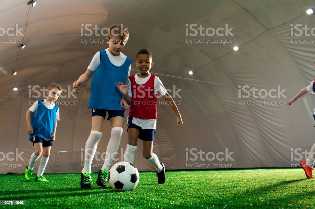 Hunting for ball stock photo