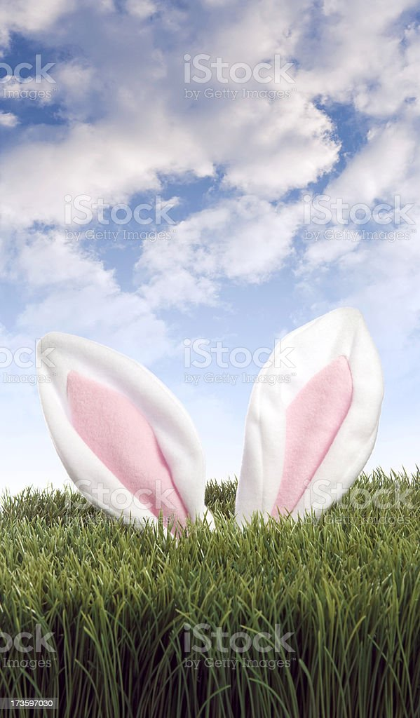 Hunting for Easter Eggs royalty-free stock photo