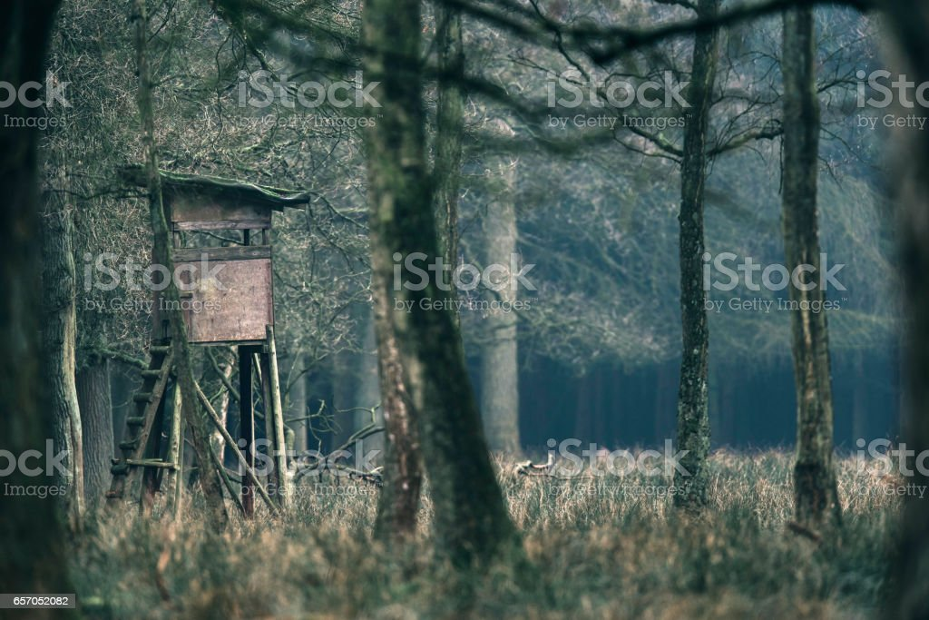 Hunting high seat in field of forest. stock photo