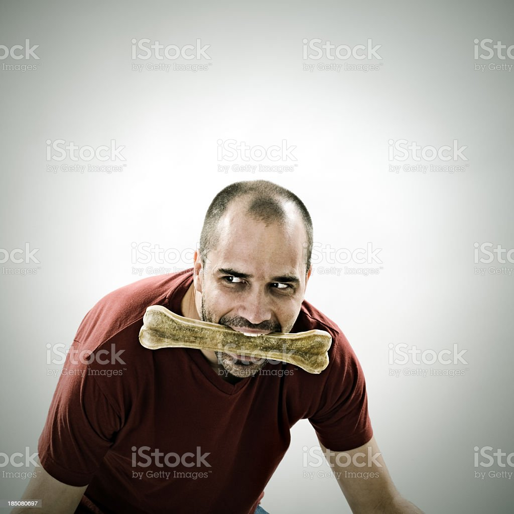 Hunting instincts royalty-free stock photo