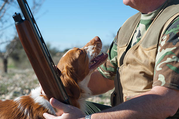 Hunting partners stock photo