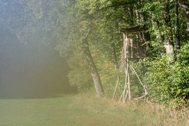 Hunting pulpit in the black forest stock photo