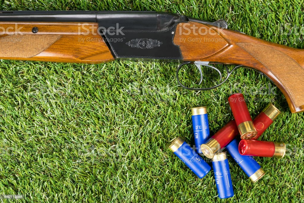 Hunting rifle and cartridges concept on the grass stock photo