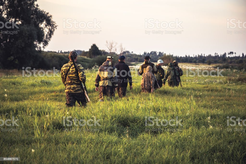 Hunting scene with group of men hunters going through tall grass on rural field at sunset during hunting season stock photo