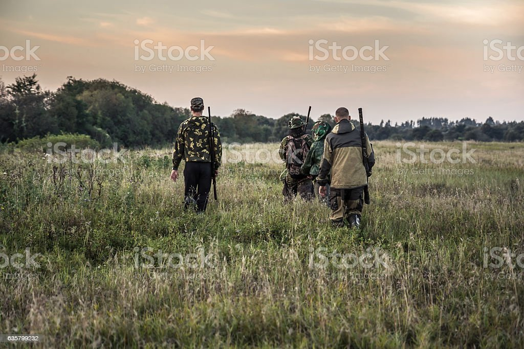 Hunting scene with hunters going through rural field during hunting stock photo
