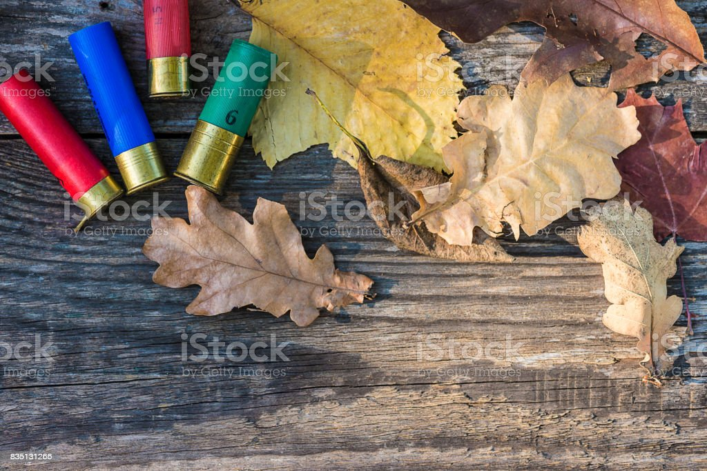 hunting season stock photo