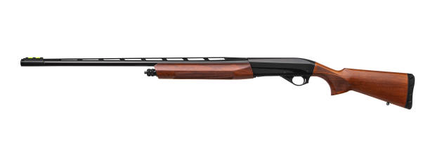Hunting semi-automatic shotgun with wooden butt isolate on white background stock photo