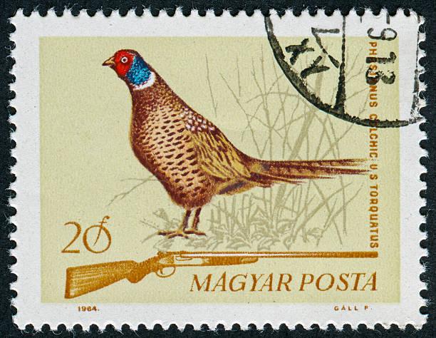 Hunting Stamp stock photo