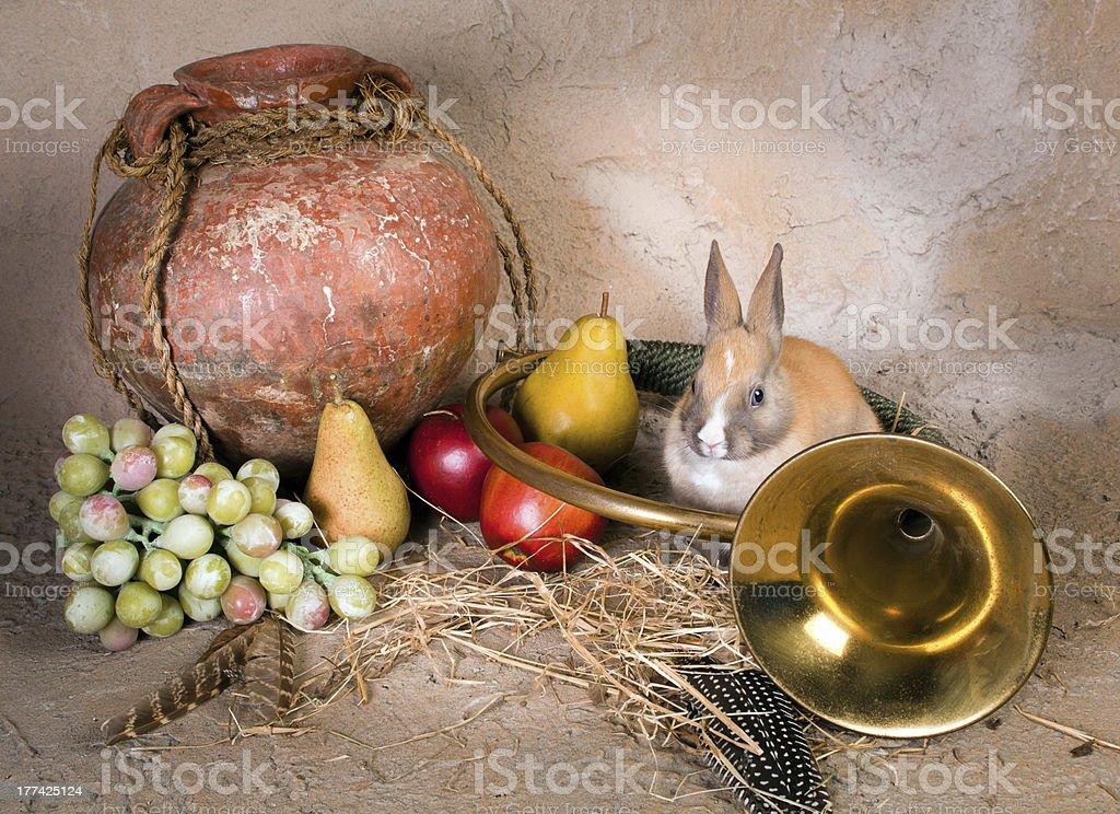 Hunting still life with rabbit royalty-free stock photo