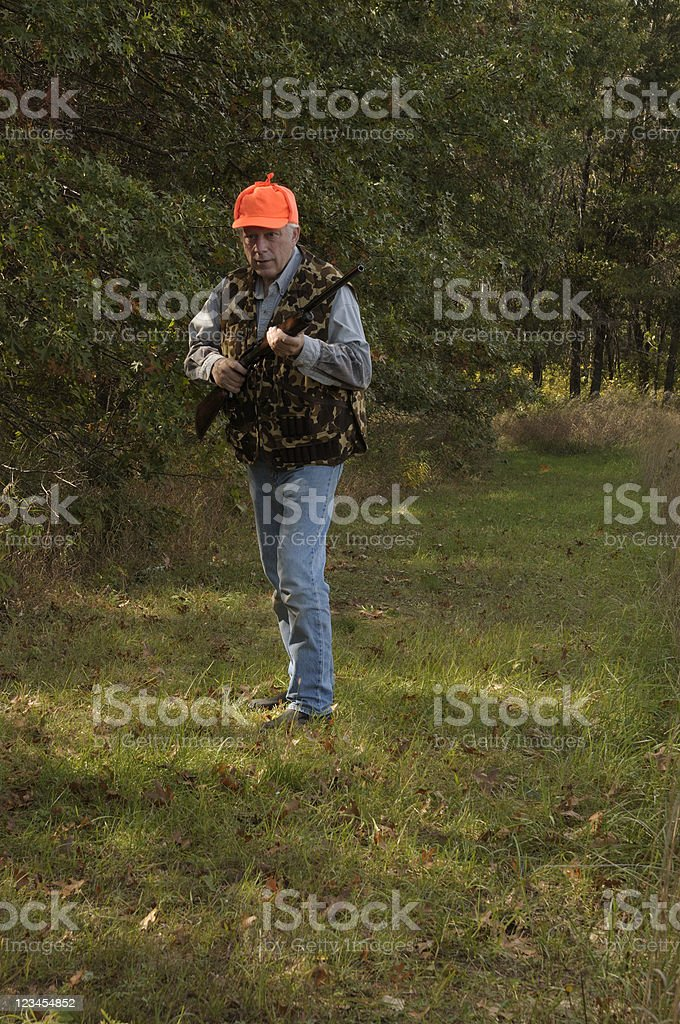 Hunting Too royalty-free stock photo