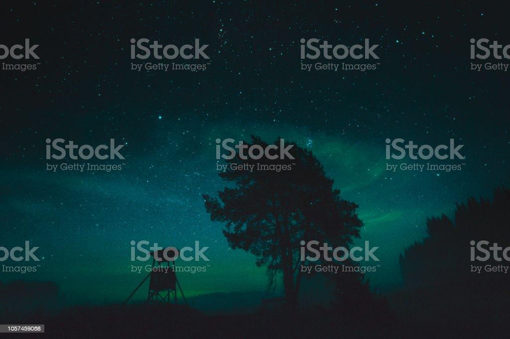 Jakttorn och träd i siluett mot stjärnhimmel i Sverige.