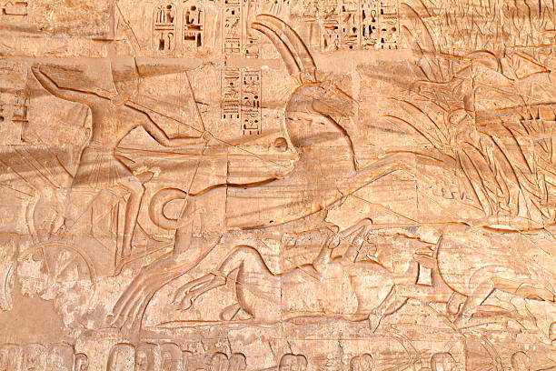 """Hunting Wild Bull in the Marsh, Medinet Habu, Luxor, Egypt """"Monumental sunk relief known as 'Hunting the Wild Bull in the Marsh', Medinet Habu, Luxor, Egypt.  Medinet Habu is the mortuary temple of the 12th century BC pharaoh Ramesses III (also Ramses, Rameses and Usermaatre-meryamun). The relief is located on the south west wall of the temple near the first Pylon.   Located on the West Bank in the southern part of the Theban necropolis, Medinet Habu is one of the finest temples in Egypt."""" Tomb Of Ramses III stock pictures, royalty-free photos & images"""