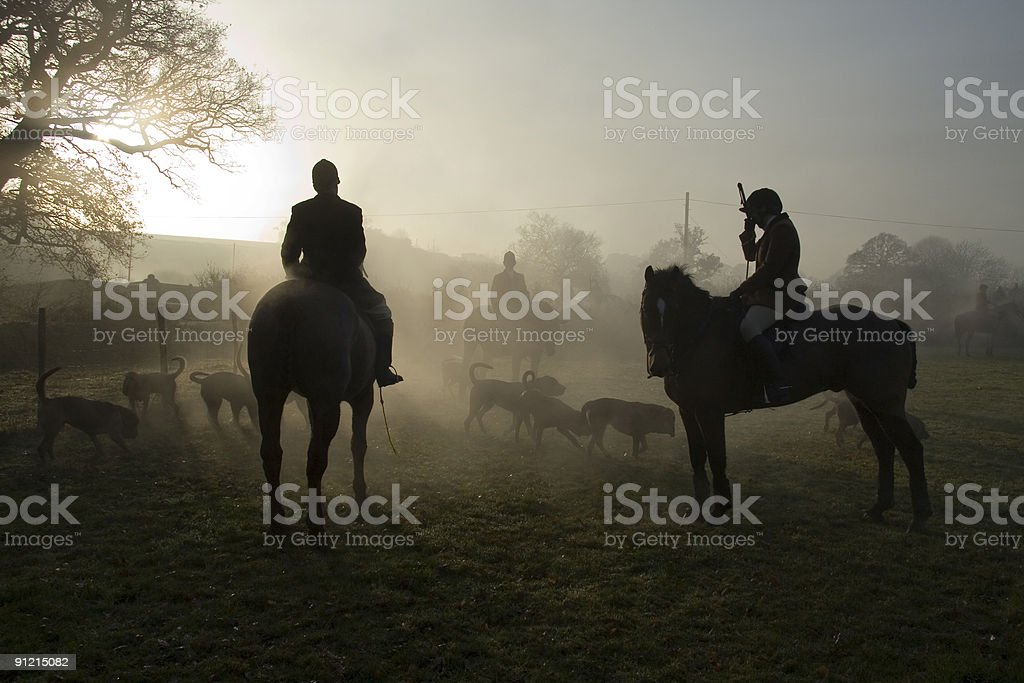 Hunting with bloodhounds royalty-free stock photo