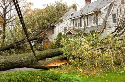 Hurricane Damaged Homes