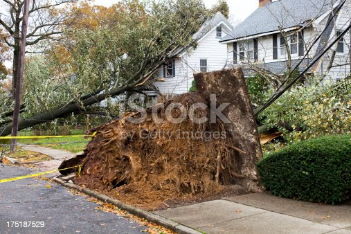 Home Damaged by Hurricane Storm with Strong Winds. Home Insurance Concepts with Fallen Tree Damage.