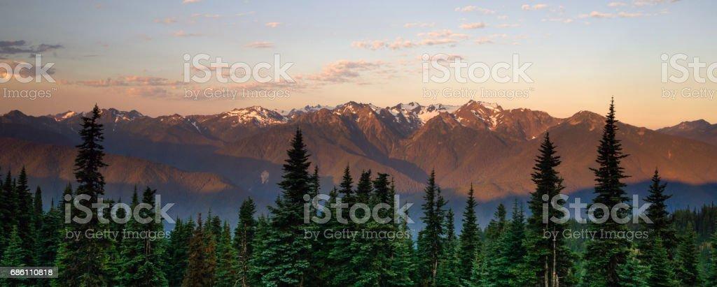 Hurricane Ridge Olympic National Park Mountain Range Sunset – Foto