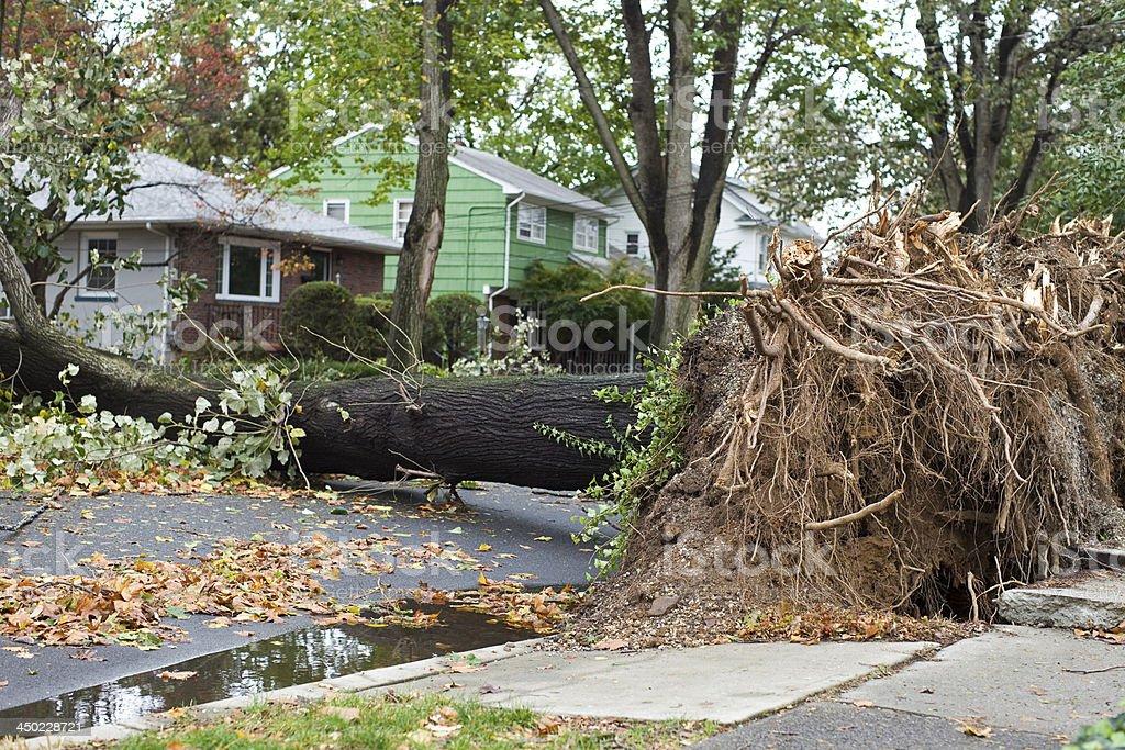 Hurricane Storm stock photo
