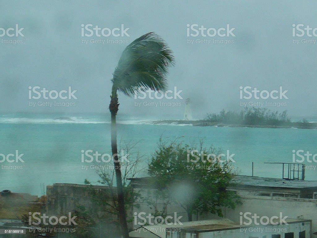 Hurricane windswept scene thru raindrops bokeh stock photo