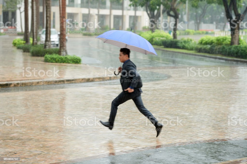 Hurrying Home in Pouring Rain royalty-free stock photo