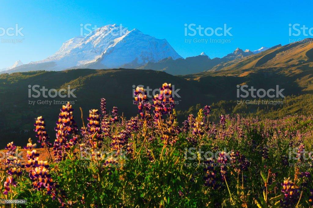 Huscaran montanha - Cordilheira Blanca nos Andes peruanos - Huaraz, Ancash, Peru - foto de acervo