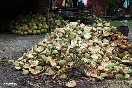 Husks of coconuts, Puerto Princessa, Palawan island, Philippines