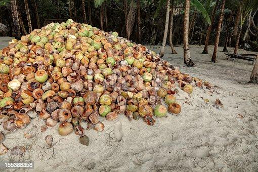 Husks of coconuts, El Nido, Palawan island, Philippines, Hdr