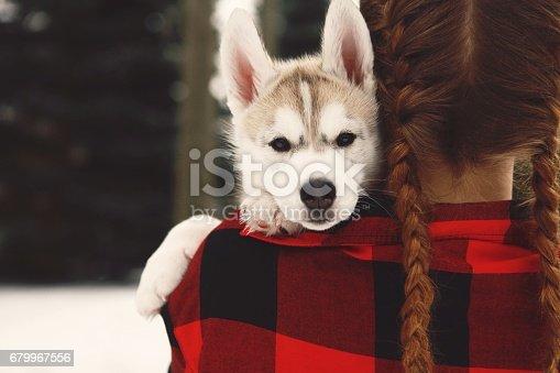 istock Husky Pup Peeks Over Girl's Shoulder 679967556