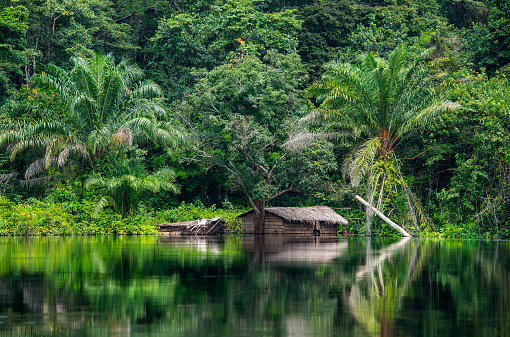 Congolese house at the shoreline of Congo river.  Equateur province, Democratic Republic of Congo, Africa