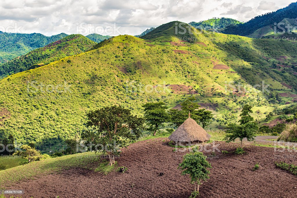 Hut in the Bonga forest reserve in southern Ethiopia stock photo