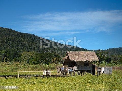 single small hut in the green field