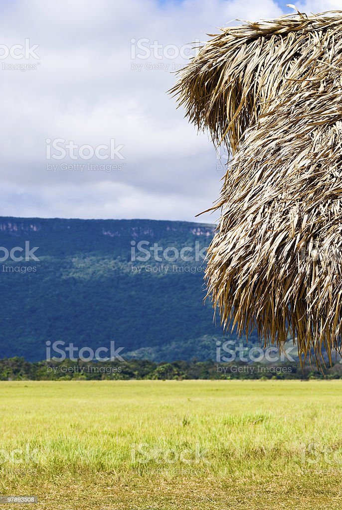 Hut in the plain royalty-free stock photo
