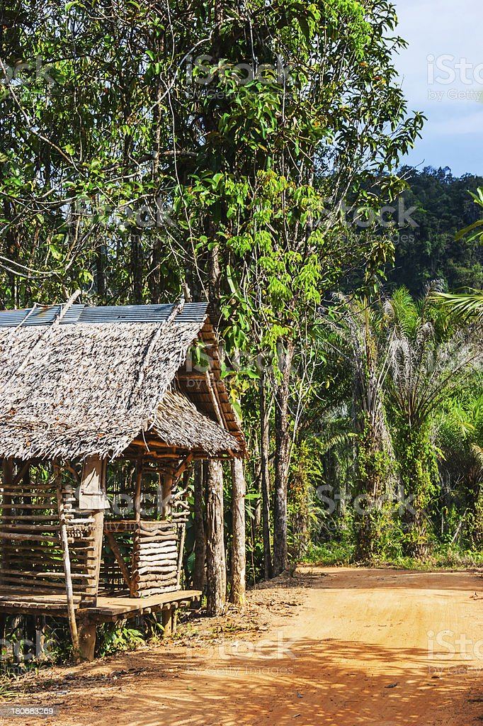 hut on a road in the jungle royalty-free stock photo