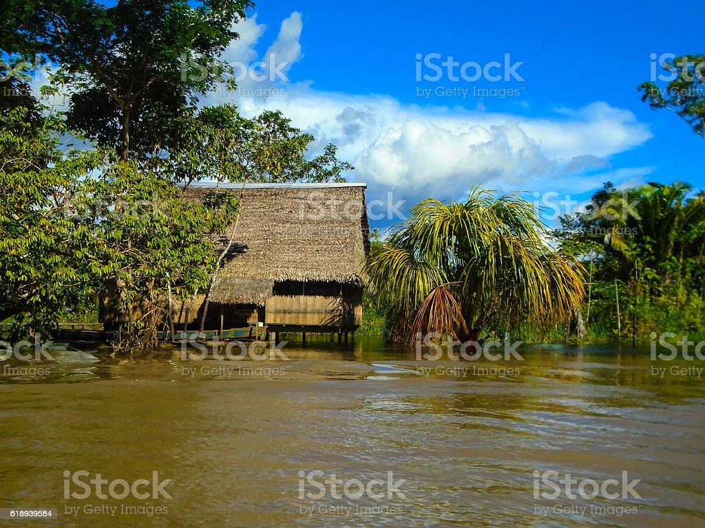 Hut on the Amazon river stock photo
