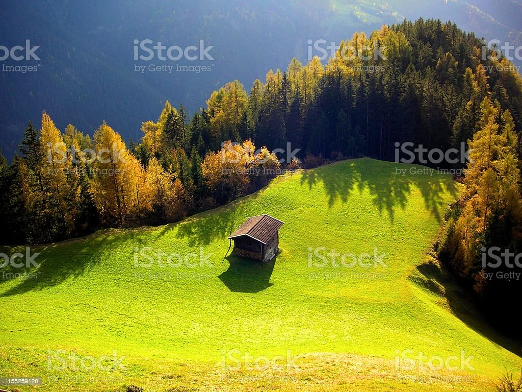 Hut on the autumn forest glade stock photo