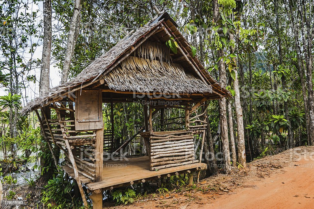 hut on the road in jungle royalty-free stock photo