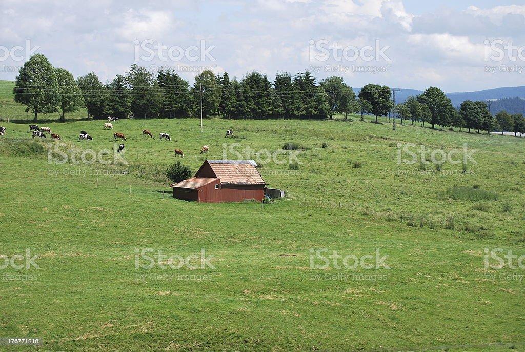 hut royalty-free stock photo