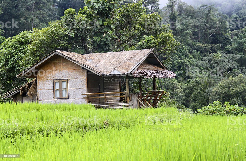 hut rice thailand royalty-free stock photo