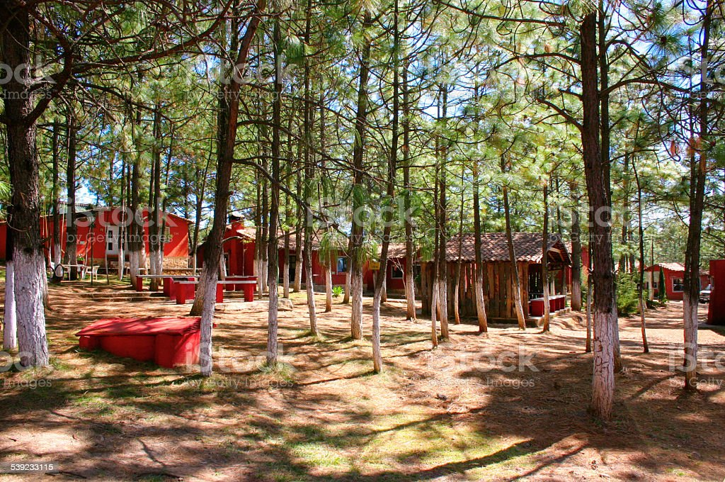 Huts in the forest royalty-free stock photo